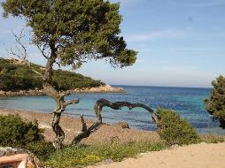 Car rental in Olbia, Italy